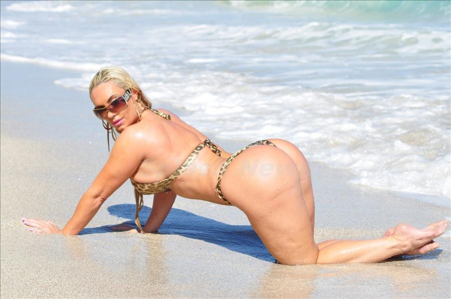 Ice t and coco austin bikini consider